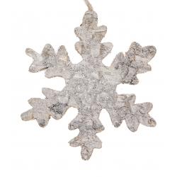 Sneeuwvlok in berkenschors