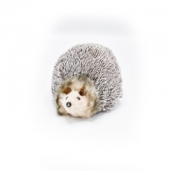 Fur Hedgehog