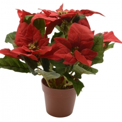 Rose de Noel artificielle - Poinsettia