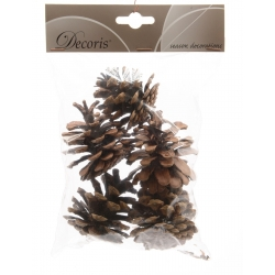 5 decorative pine cones