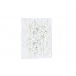 Set of 6 White Christmas Roses